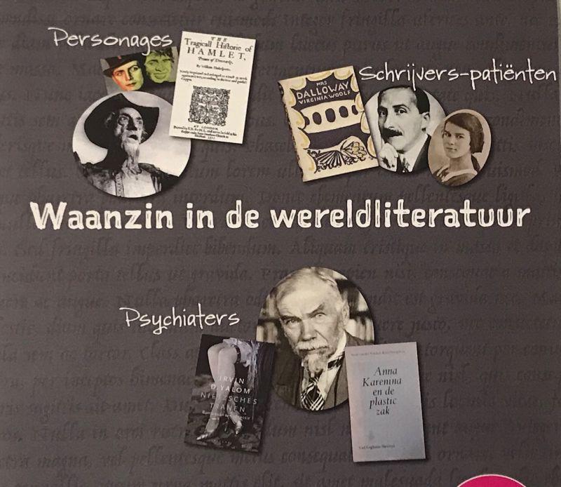 Waanzin in de wereldliteratuur